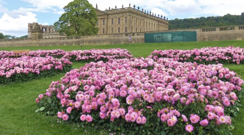 Pink flowers in front of the house at Chatsworth
