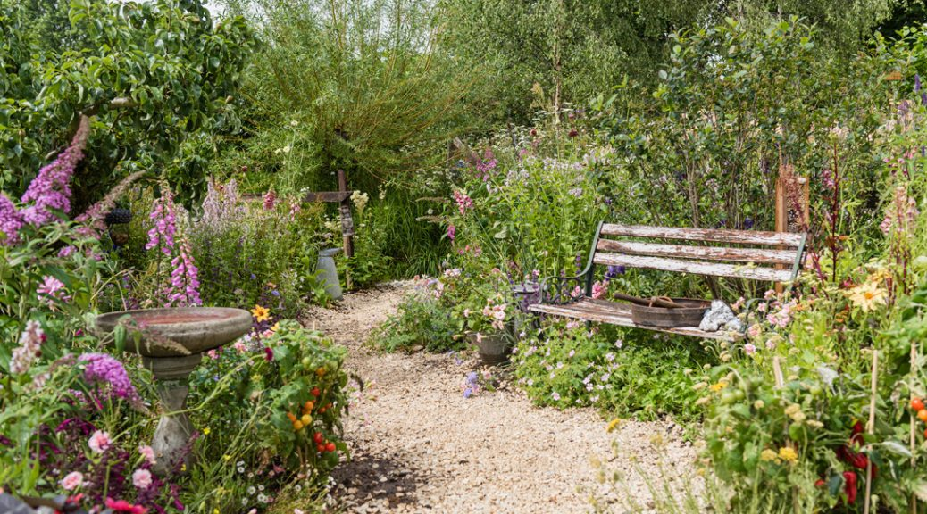 Bench and Cotswold chippings in the Springwatch garden. Also features green wild planting..