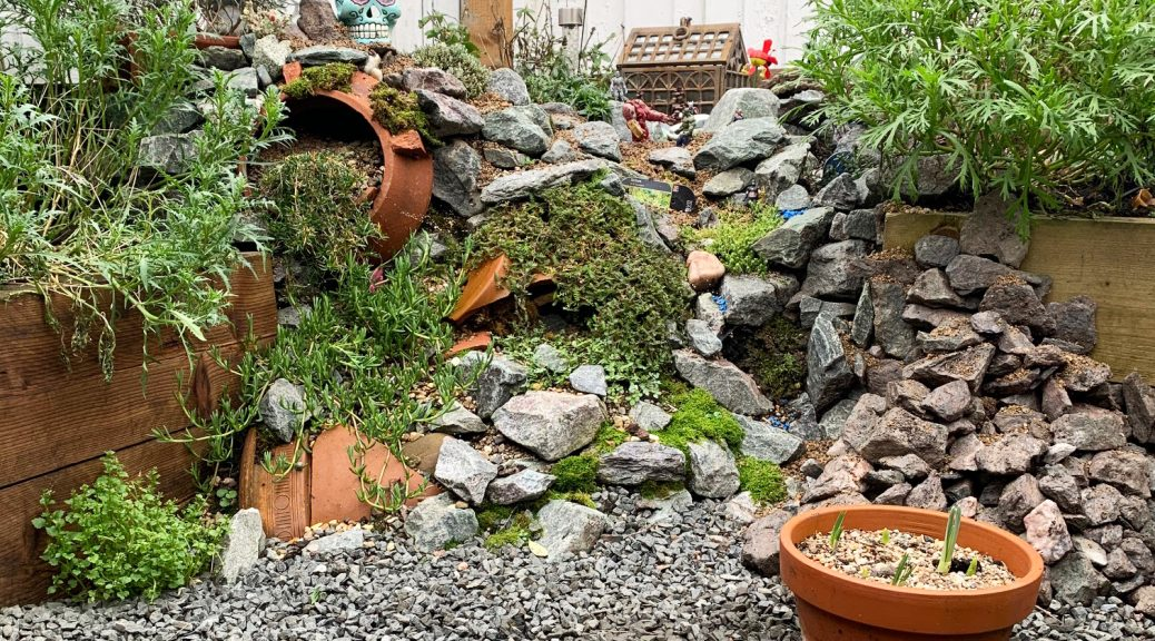 Rockery style garden with lots of terracotta pots and black chippings