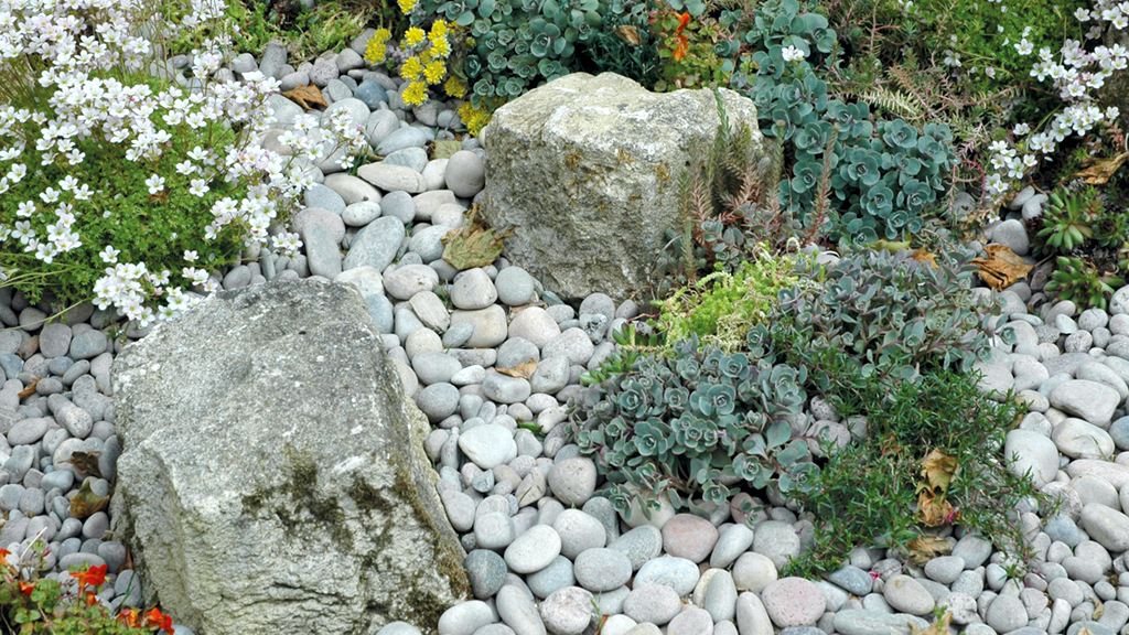 rockery with pebbles