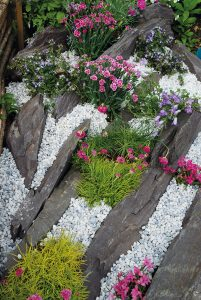 Rockery using plum slate and polar ice chippings with pink flowers.