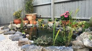 Garden pond with terracotta pots decorating around the pond. Grey fencing panels surround.