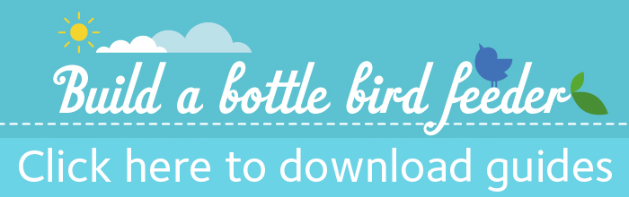 An image with a link for downloading a bottle bird feeder guide.