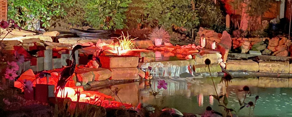 The pond lit at night with red lighting.