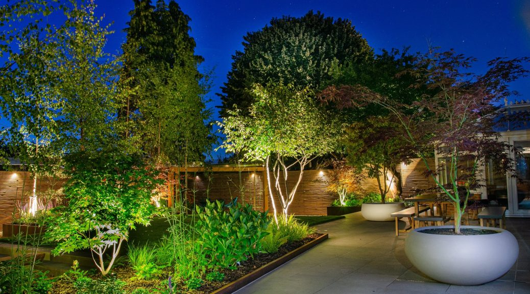 overall shot of back garden lit at night