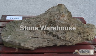 Petrified Wood 11 (Stone)
