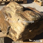 Petrified Wood 15 (Boulder)