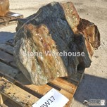 Petrified Wood 17 (Stone)
