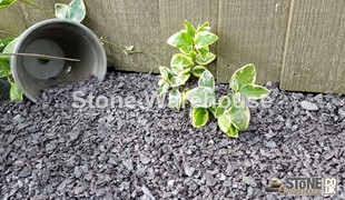 Slate Mini Mulch & Pipe Bedding 5-14mm