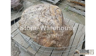 Petrified Wood 24 (Stone)